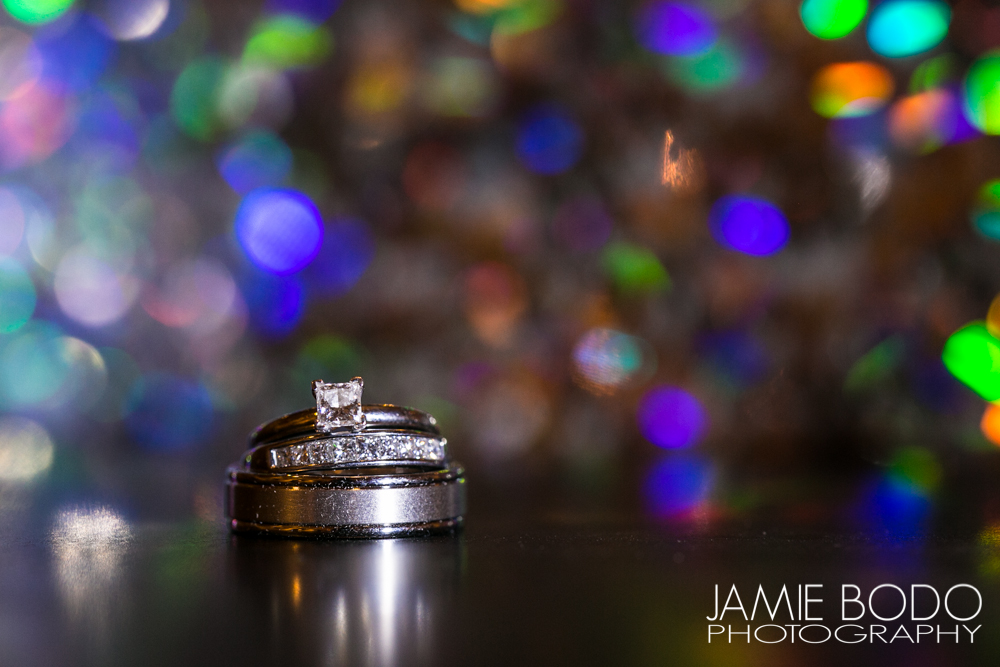 The Palace at Somerset Wedding Photographer