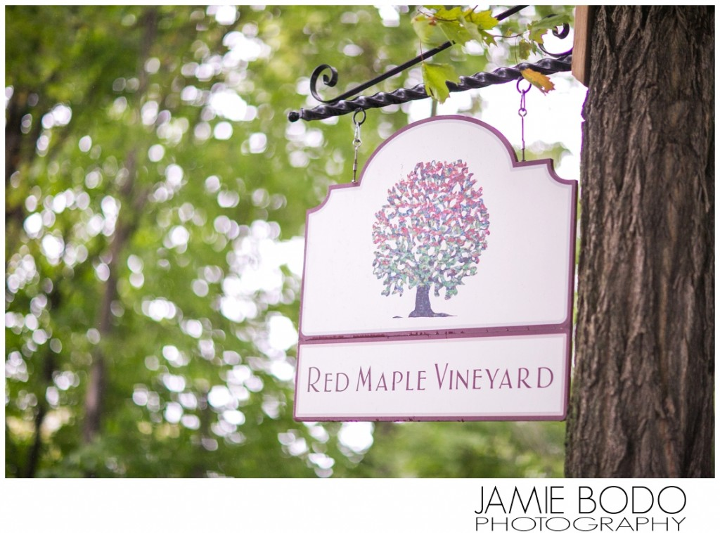 Red Maple Farms NY Wedding Photos_0064