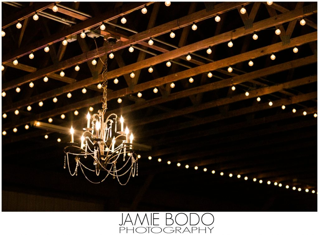 Stone Rows Farm Wedding Photos_0069